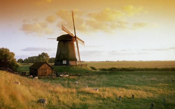 netherlands-landscape-601-2